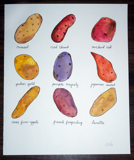 Potatoes is a watercolor painting and matching clay sculpture set of 9 different kinds of potatoes. It was for a show at the Other Side Arts in Denver back in February of 2009.